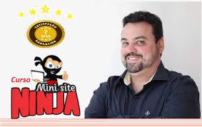 mini site online